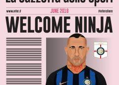 Inter Milan sign Radja Nainggolan for £21m